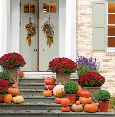 Close The Front Door A Punch Of Color Design Bloglovin