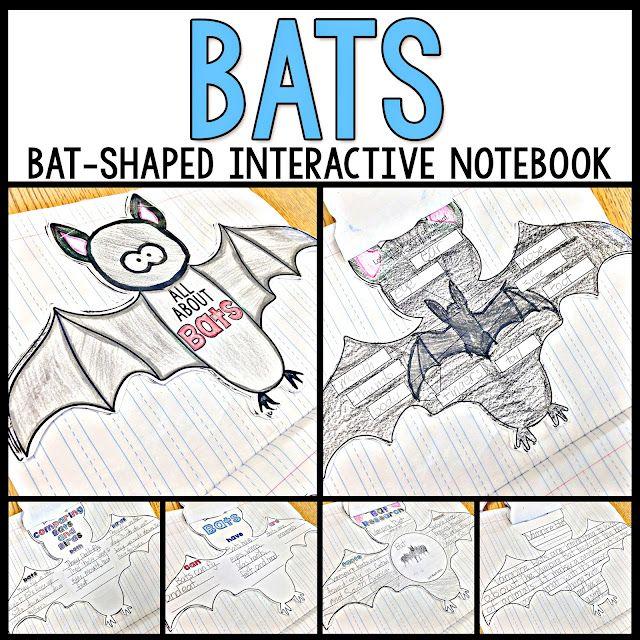 EEEEEK! Bats and Spiders.. OH MY! | Primary Chalkboard | Bloglovin\'