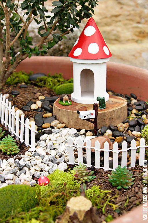 Fairy Garden Ideas How To Make A Bonsai Tree Fairy Garden Lil Blue Boo Bloglovin