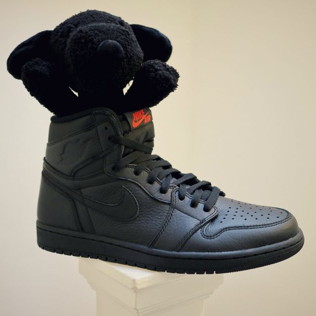 a6ed02b59b97 Nike Air Jordan 1 Retro High OG (with a Peanuts x Kaws Snoopy plush) I just  bought my first ever pair of Jordans.