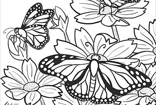 Beautiful Butterfly Coloring Pages Skip To My Lou Bloglovin