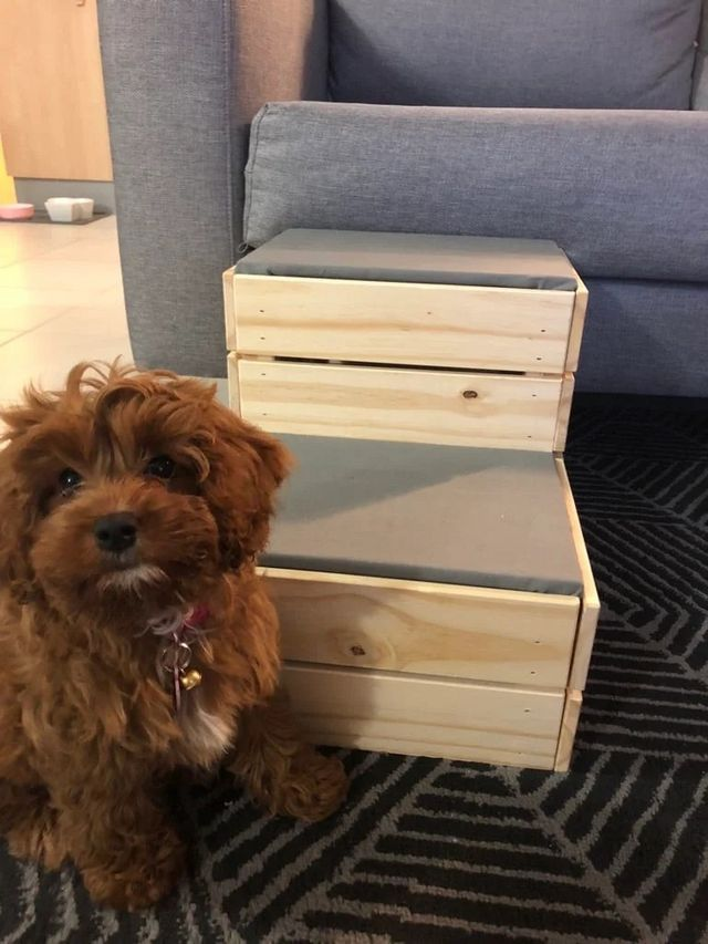 Small Dog Diy These Dog Steps From Ikea Crates Ikea